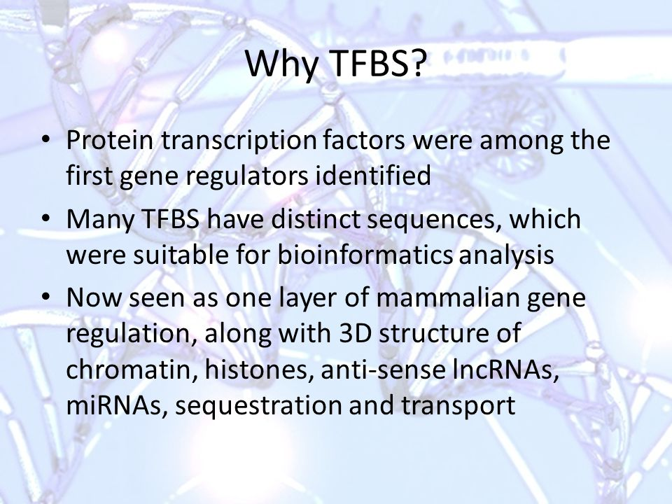 Outline Transcription factors and DNA-binding proteins Factors affecting TF binding DNA motifs & PSWM