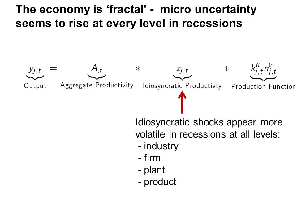 Idiosyncratic shocks appear more volatile in recessions at all levels: - industry - firm - plant - product The economy is 'fractal' - micro uncertainty seems to rise at every level in recessions