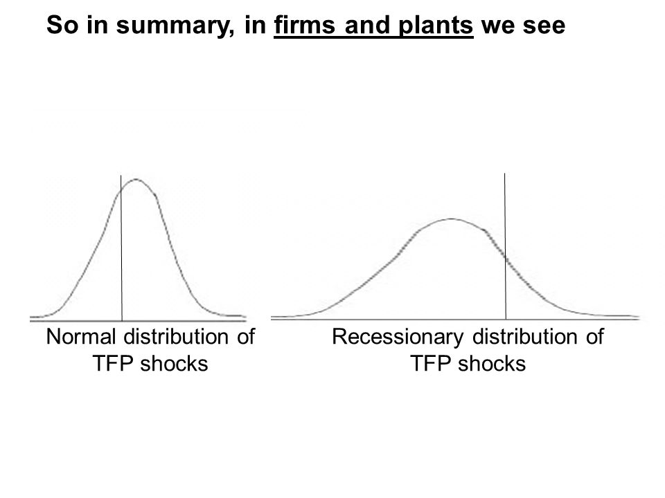 So in summary, in firms and plants we see Recessionary distribution of TFP shocks Normal distribution of TFP shocks
