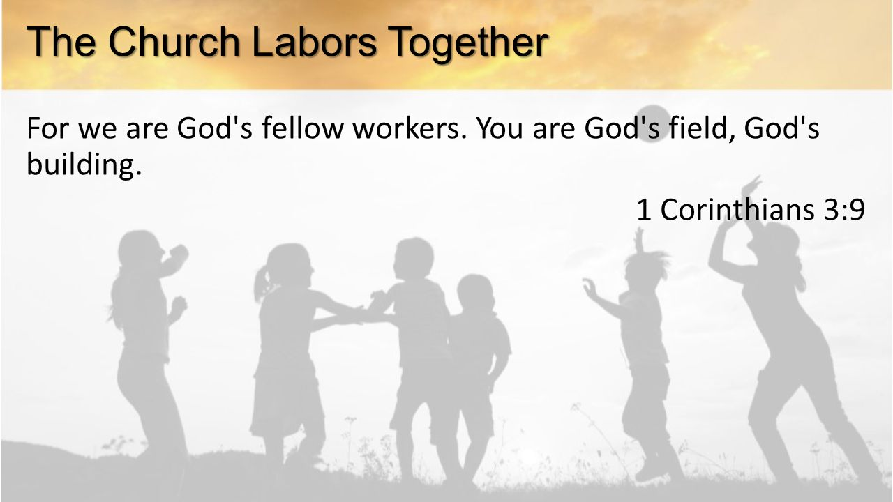 For we are God s fellow workers. You are God s field, God s building.