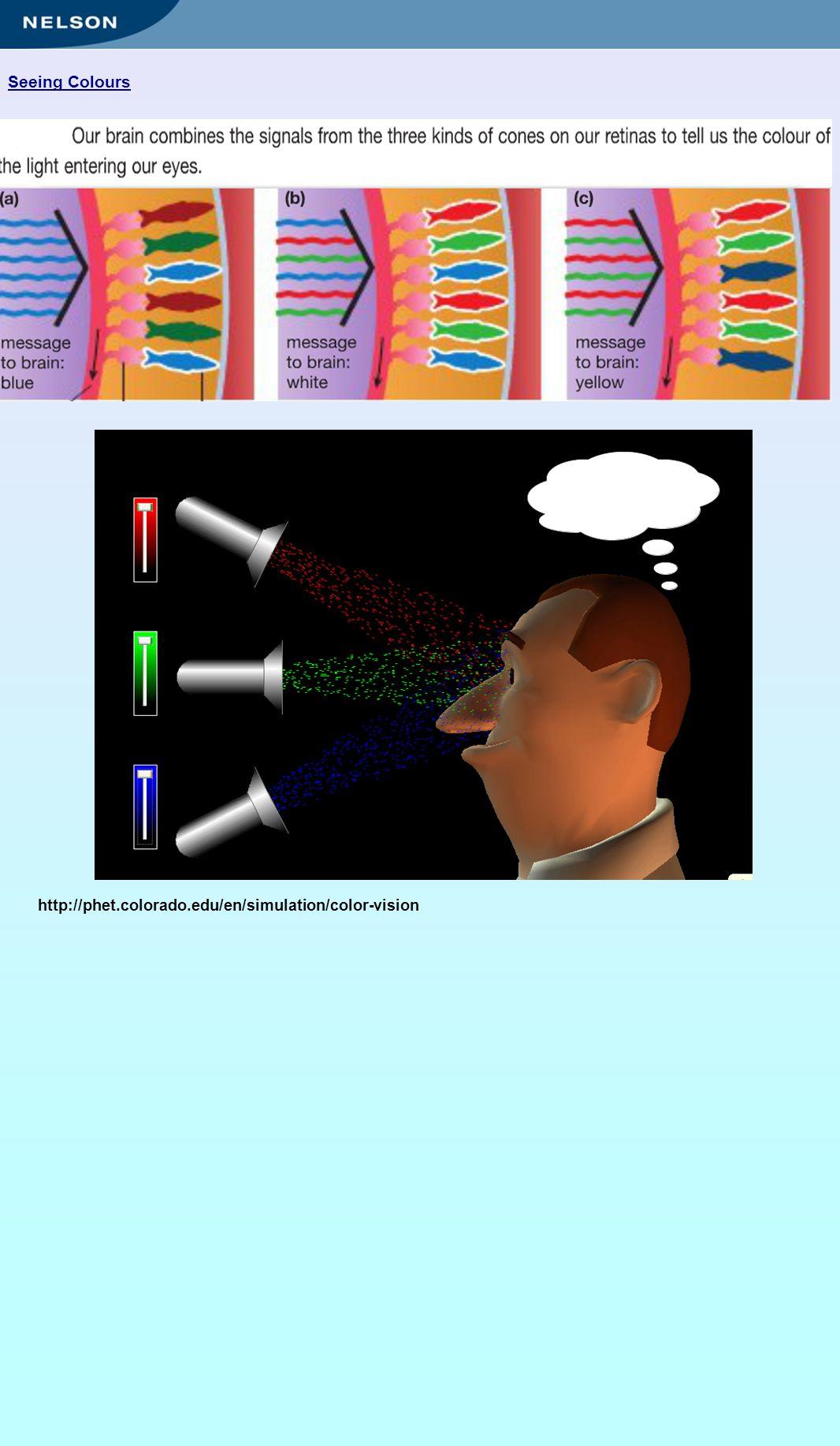 Seeing Colours http://phet.colorado.edu/en/simulation/color-vision