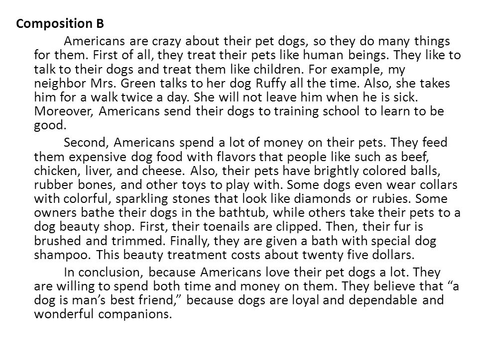 Composition B Americans are crazy about their pet dogs, so they do many things for them.