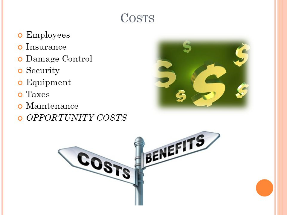C OSTS Employees Insurance Damage Control Security Equipment Taxes Maintenance OPPORTUNITY COSTS