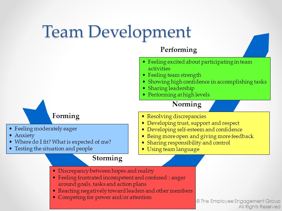 Team Development Feeling moderately eager Anxiety Where do I fit? What is expected of me? Testing the situation and people Forming Discrepancy between