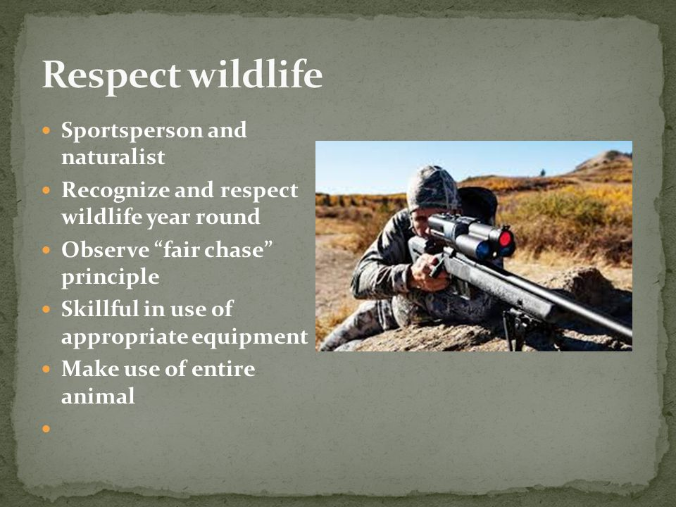 Sportsperson and naturalist Recognize and respect wildlife year round Observe fair chase principle Skillful in use of appropriate equipment Make use of entire animal