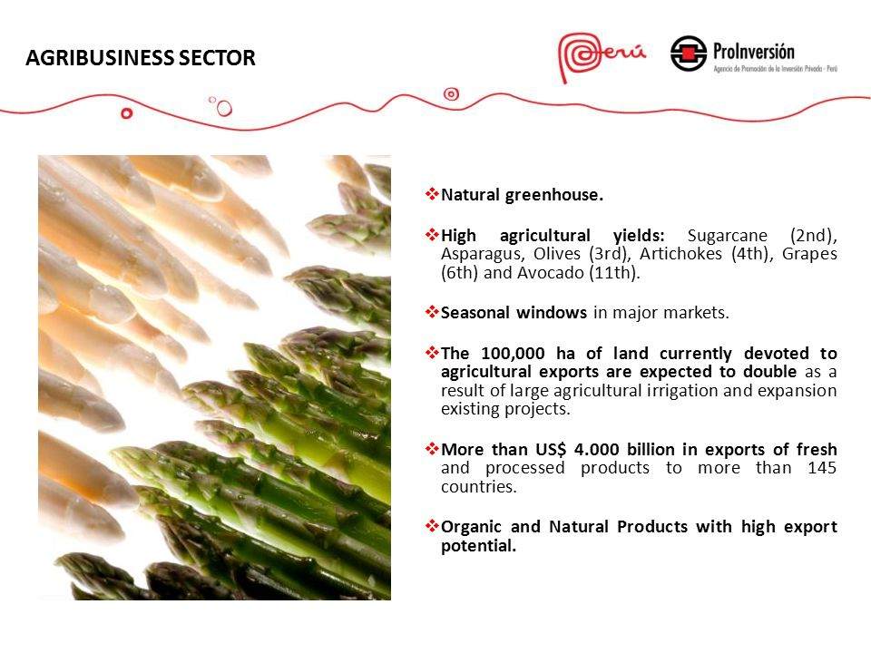 AGRIBUSINESS SECTOR  Natural greenhouse.