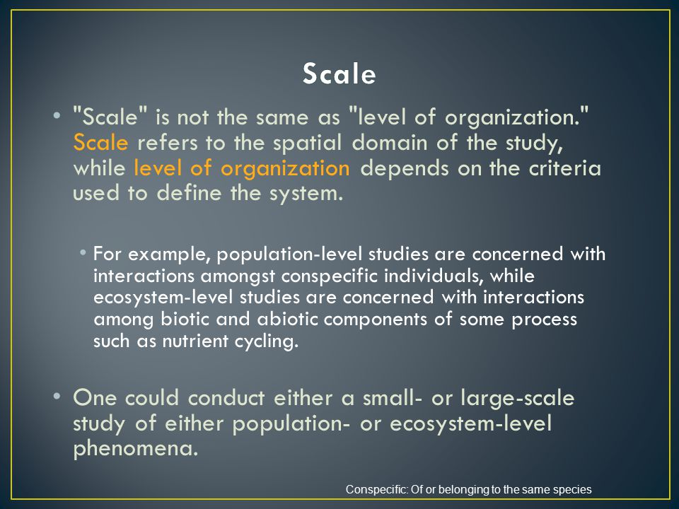 Scale is not the same as level of organization. Scale refers to the spatial domain of the study, while level of organization depends on the criteria used to define the system.