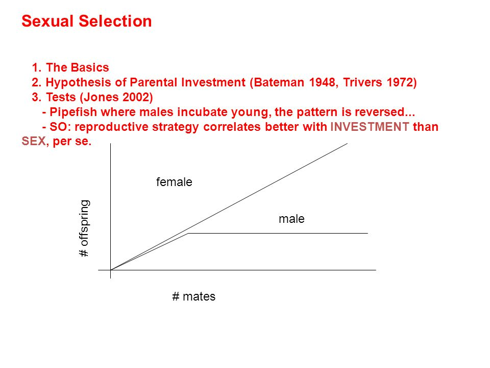 Sexual Selection - not really a level, but recognized in the same way - as a deviation from predictions offered by a strict selection model.