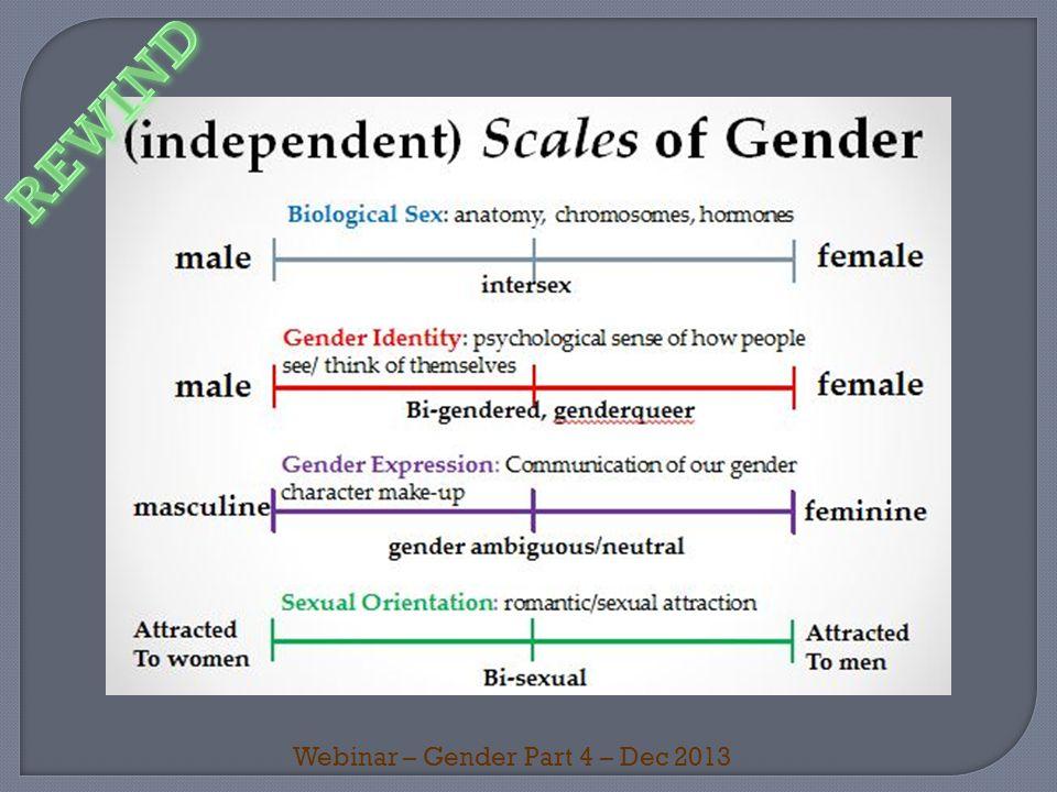 Webinar – Gender Part 4 – Dec 2013