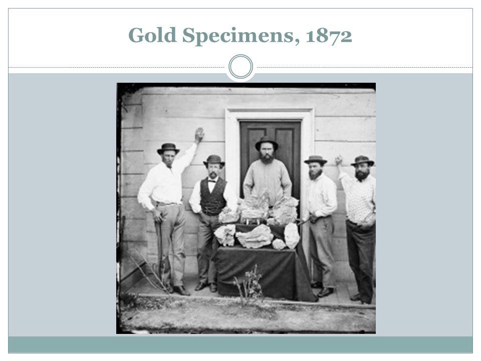 Gold Specimens, 1872