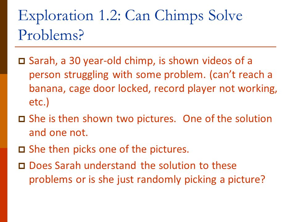 Exploration 1.2: Can Chimps Solve Problems?  Sarah, a 30 year-old chimp, is shown videos of a person struggling with some problem. (can't reach a ban