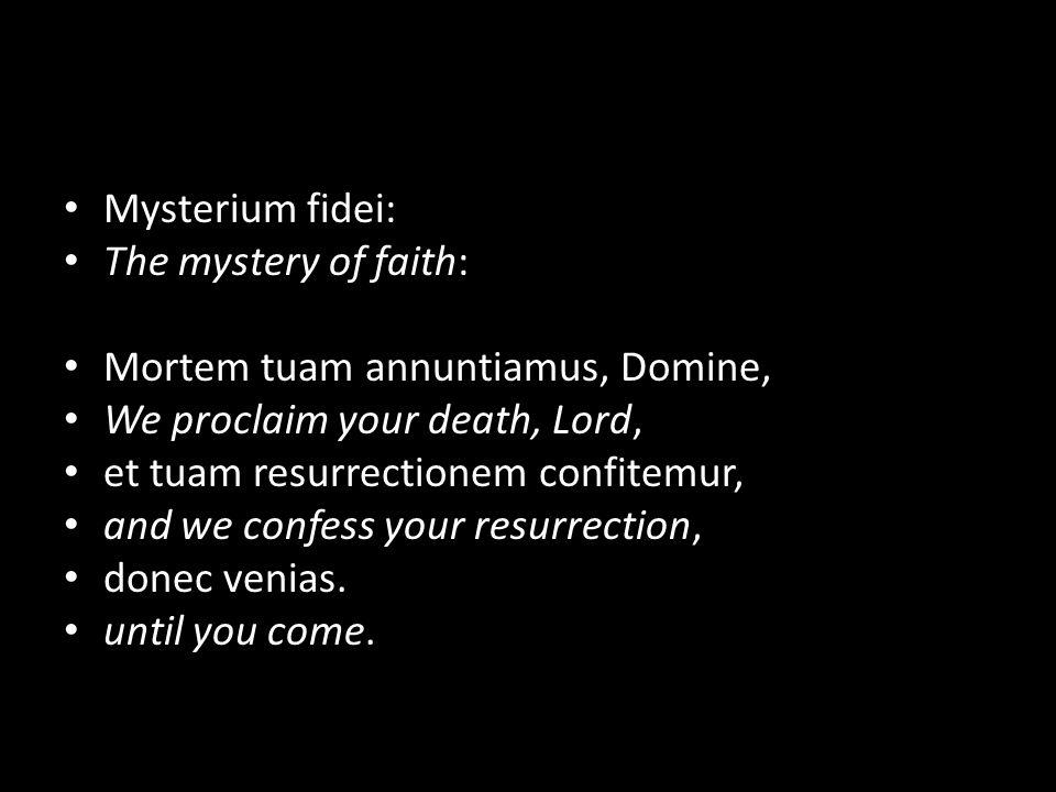 Mysterium fidei: The mystery of faith: Mortem tuam annuntiamus, Domine, We proclaim your death, Lord, et tuam resurrectionem confitemur, and we confess your resurrection, donec venias.