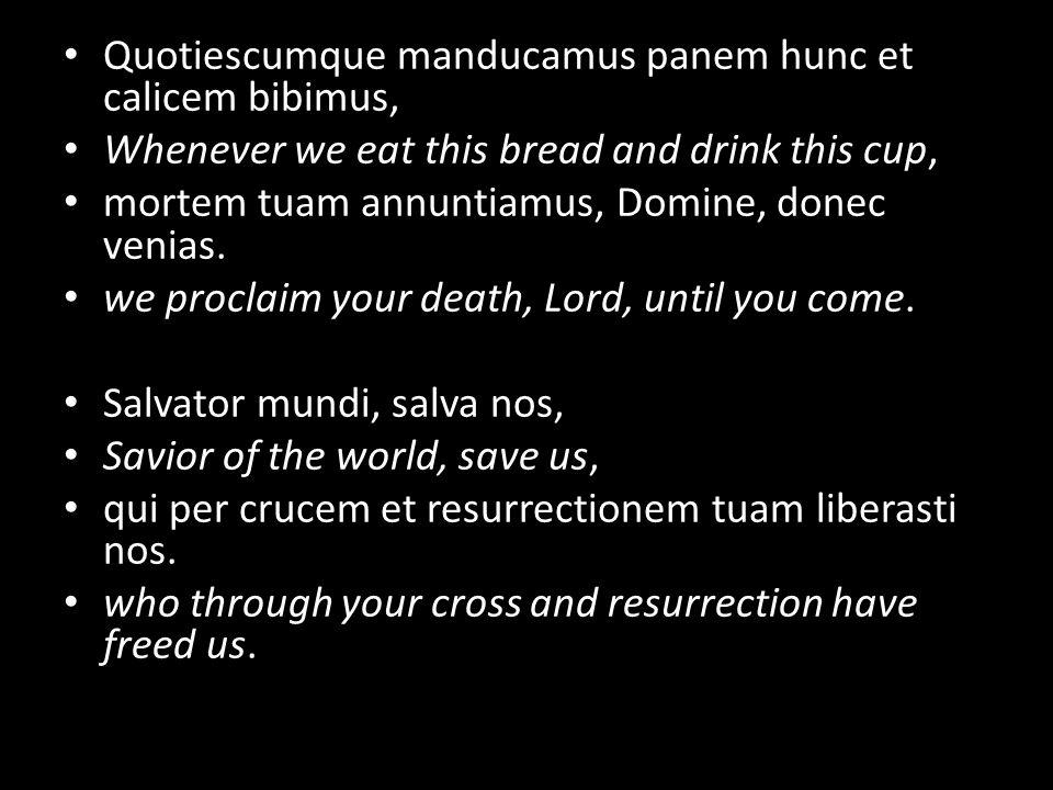 Quotiescumque manducamus panem hunc et calicem bibimus, Whenever we eat this bread and drink this cup, mortem tuam annuntiamus, Domine, donec venias.