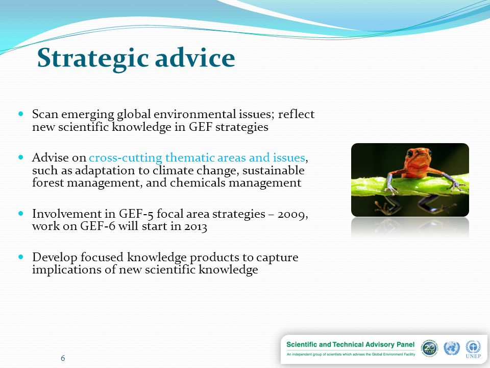 Strategic advice Scan emerging global environmental issues; reflect new scientific knowledge in GEF strategies Advise on cross-cutting thematic areas and issues, such as adaptation to climate change, sustainable forest management, and chemicals management Involvement in GEF-5 focal area strategies – 2009, work on GEF-6 will start in 2013 Develop focused knowledge products to capture implications of new scientific knowledge 6