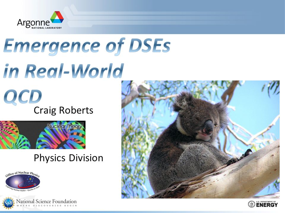 USC School on Non-Perturbative Physics: 26/7- 10/8 Craig Roberts: Emergence of DSEs in Real-World QCD 2A (84) 72