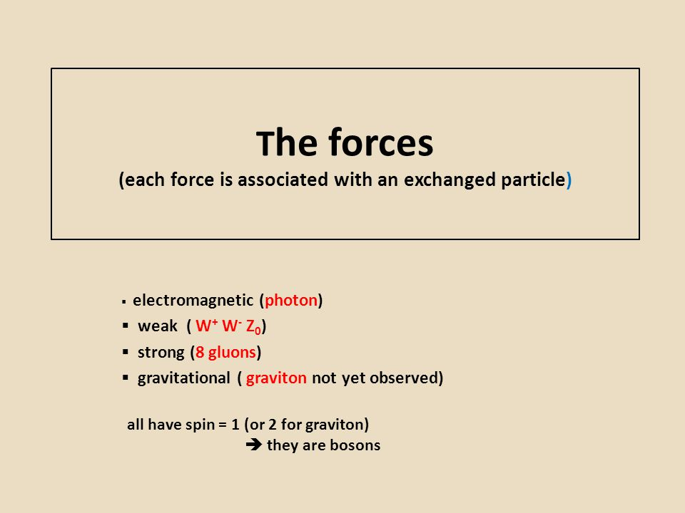 T he forces (each force is associated with an exchanged particle)  electromagnetic (photon)  weak ( W + W - Z 0 )  strong (8 gluons)  gravitationa