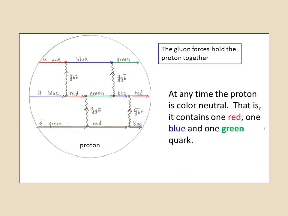 At any time the proton is color neutral. That is, it contains one red, one blue and one green quark. The gluon forces hold the proton together proton