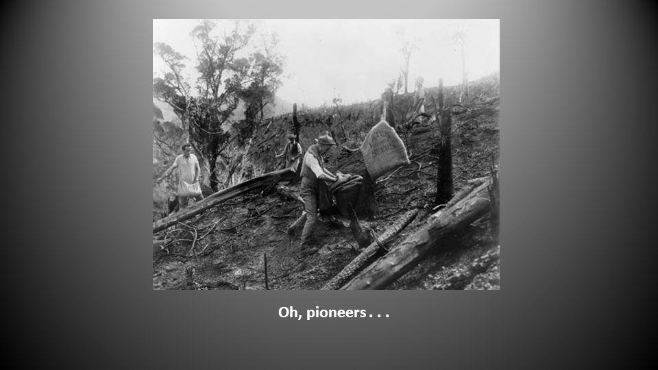 Oh, pioneers...