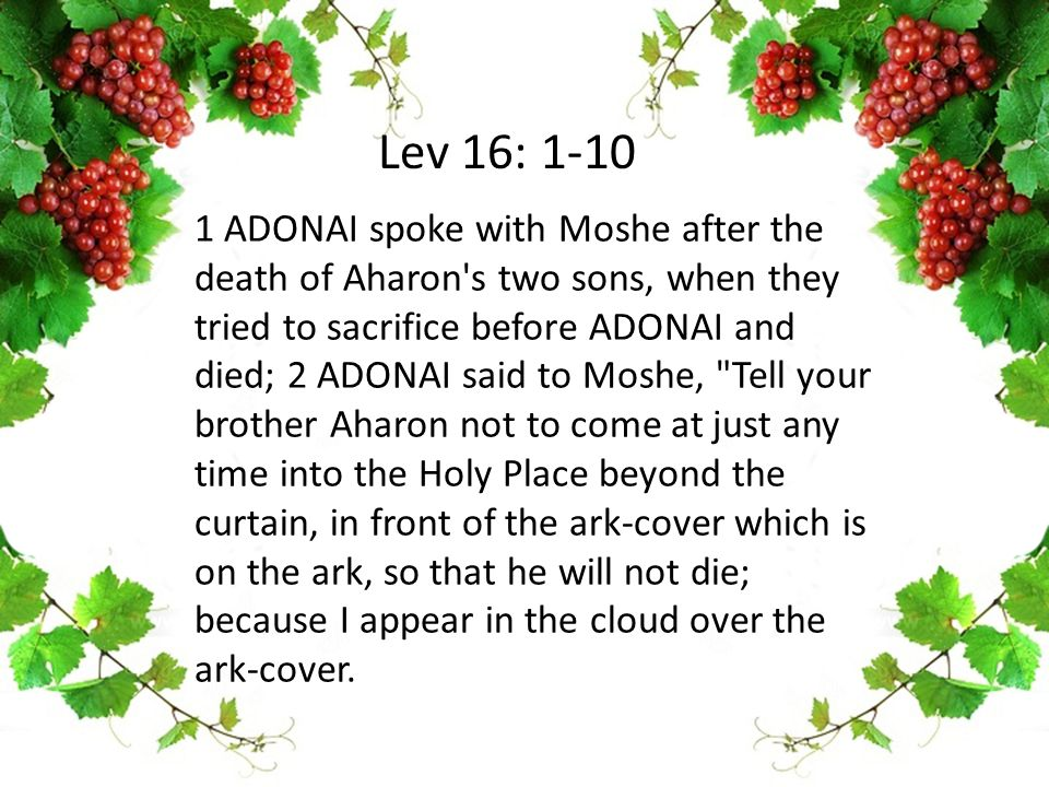 1 ADONAI spoke with Moshe after the death of Aharon's two sons, when they tried to sacrifice before ADONAI and died; 2 ADONAI said to Moshe,