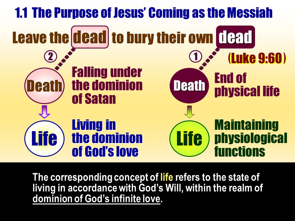 The corresponding concept of life refers to the state of living in accordance with God's Will, within the realm of dominion of God's infinite love.