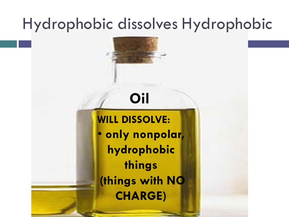 Hydrophobic dissolves Hydrophobic WILL DISSOLVE: only nonpolar, hydrophobic things (things with NO CHARGE) Oil