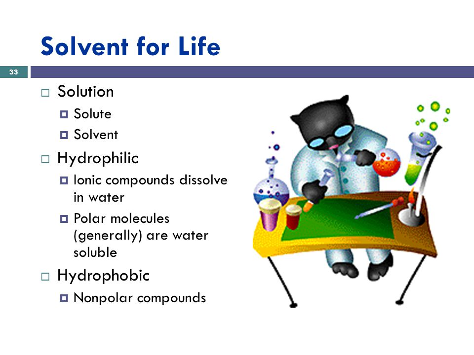 Solvent for Life  Solution  Solute  Solvent  Hydrophilic  Ionic compounds dissolve in water  Polar molecules (generally) are water soluble  Hydrophobic  Nonpolar compounds 33