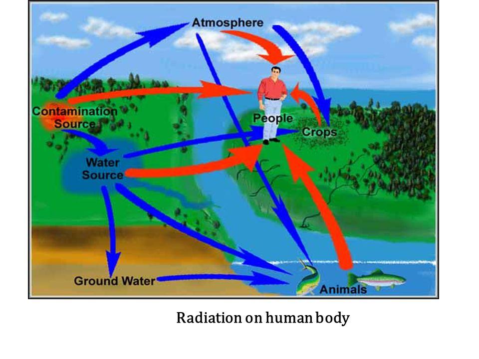 Radiation on human body