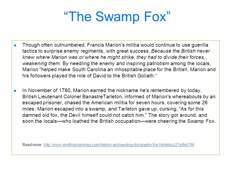 The Swamp Fox Though often outnumbered, Francis Marion s militia would continue to use guerilla tactics to surprise enemy regiments, with great success.