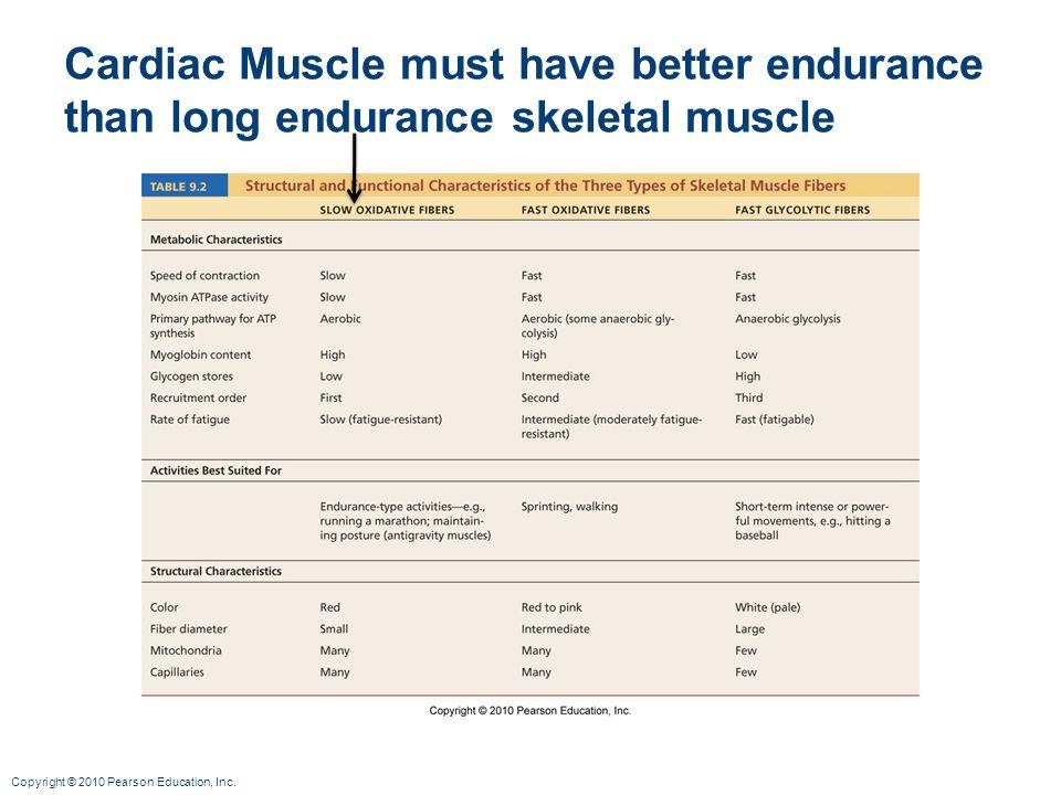 Copyright © 2010 Pearson Education, Inc. Cardiac Muscle must have better endurance than long endurance skeletal muscle