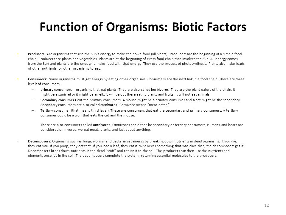 Function of Organisms: Biotic Factors Producers: Are organisms that use the Sun s energy to make their own food (all plants).