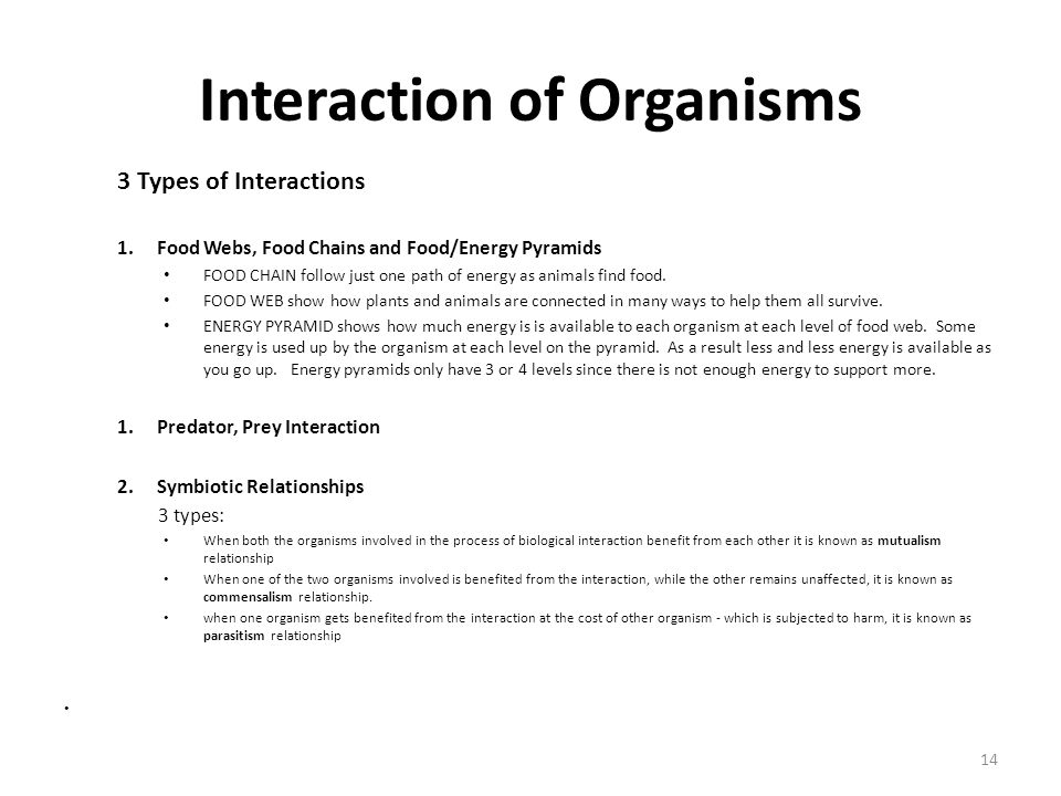 Interaction of Organisms 3 Types of Interactions 1.Food Webs, Food Chains and Food/Energy Pyramids FOOD CHAIN follow just one path of energy as animal