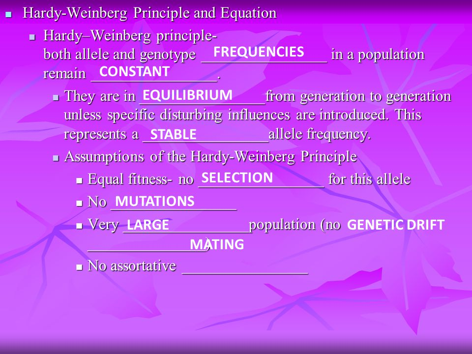 Hardy-Weinberg Principle and Equation Hardy-Weinberg Principle and Equation Hardy–Weinberg principle- both allele and genotype ________________ in a population remain ________________.