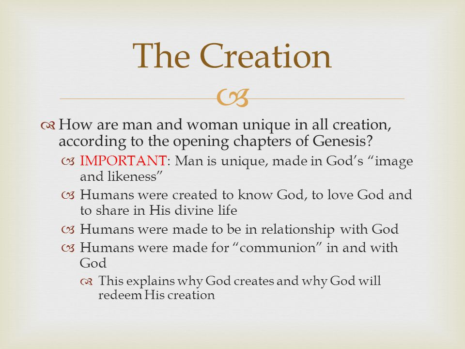   How are man and woman unique in all creation, according to the opening chapters of Genesis.