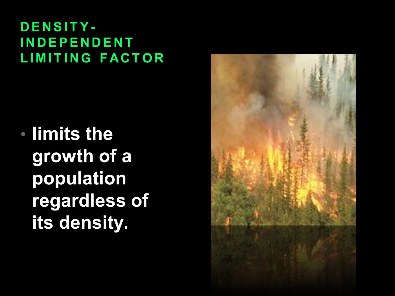 DENSITY- INDEPENDENT LIMITING FACTOR limits the growth of a population regardless of its density.