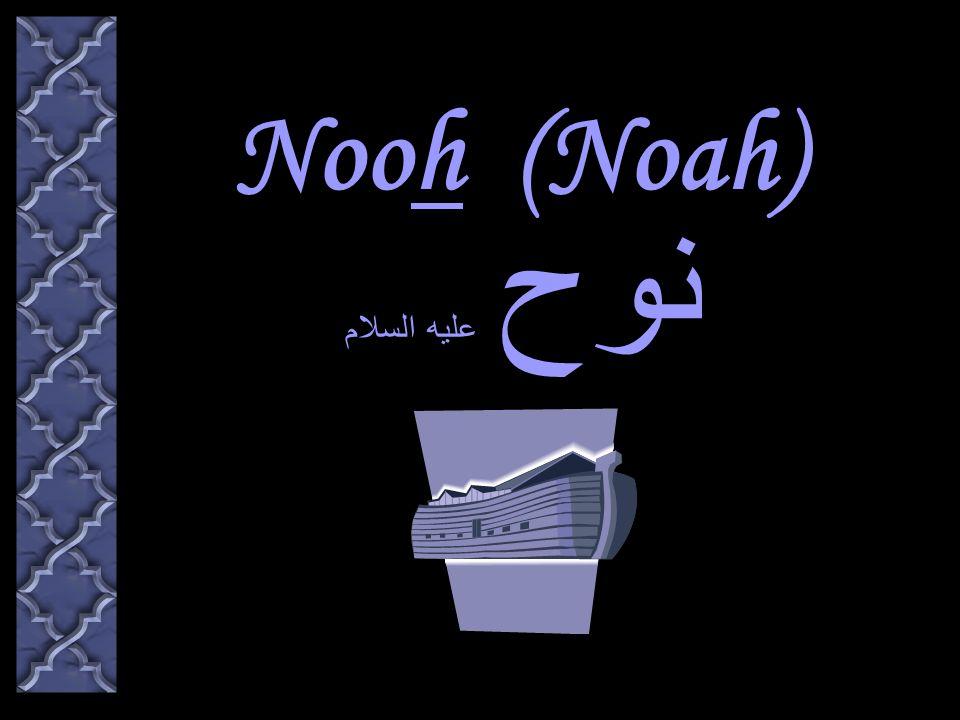 Nooh (Noah) نوح عليه السلام