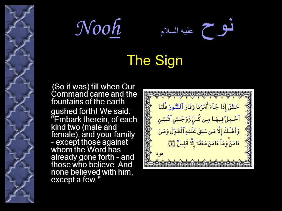 Nooh نوح عليه السلام (So it was) till when Our Command came and the fountains of the earth gushed forth.