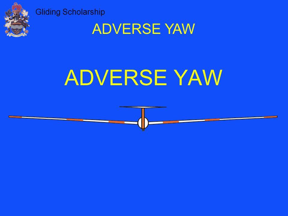 Gliding Scholarship ADVERSE YAW