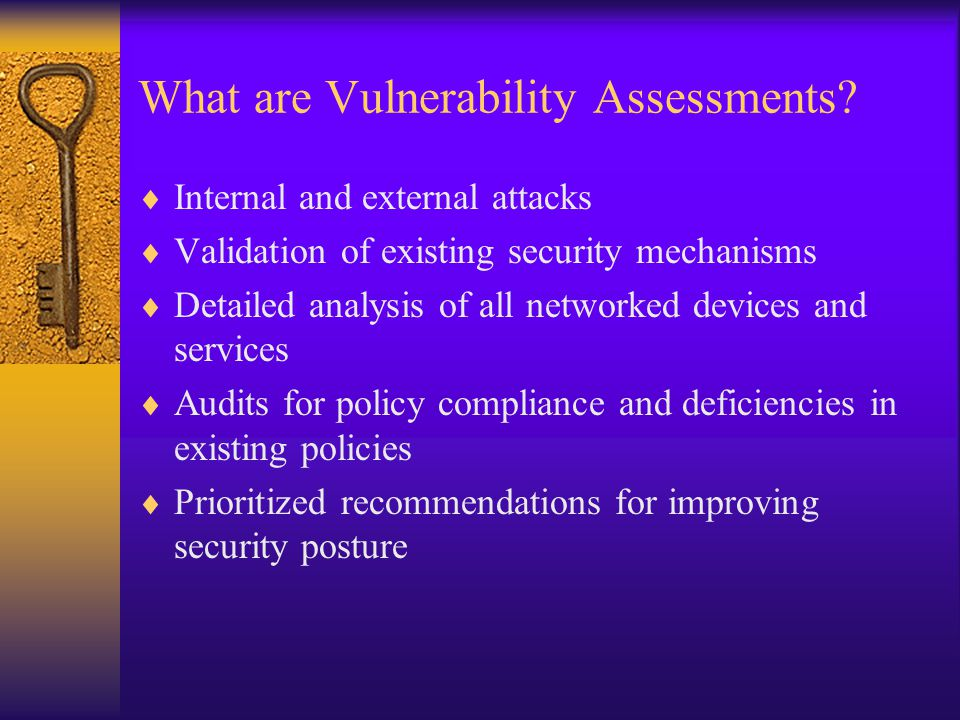 What are Vulnerability Assessments.