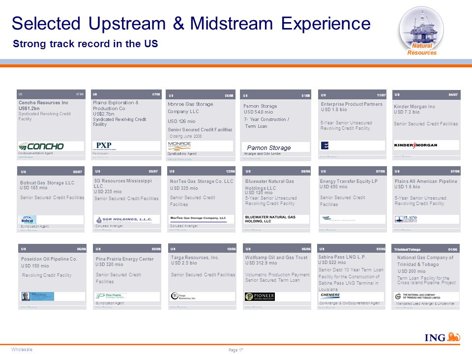 Wholesale Do not put content in the brand signature area Wholesale can be replaced with business unit Page 17 Selected Upstream & Midstream Experience