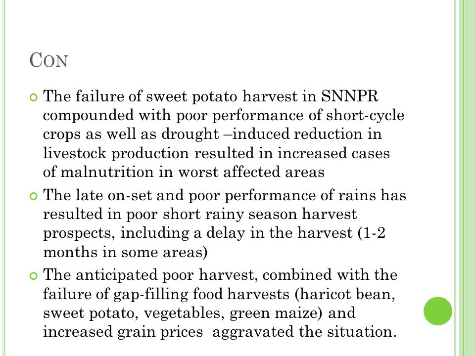C ON The failure of sweet potato harvest in SNNPR compounded with poor performance of short-cycle crops as well as drought –induced reduction in livestock production resulted in increased cases of malnutrition in worst affected areas The late on-set and poor performance of rains has resulted in poor short rainy season harvest prospects, including a delay in the harvest (1-2 months in some areas) The anticipated poor harvest, combined with the failure of gap-filling food harvests (haricot bean, sweet potato, vegetables, green maize) and increased grain prices aggravated the situation.