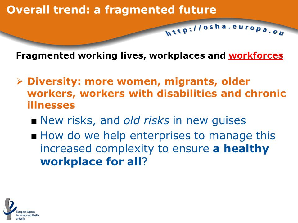 Overall trend: a fragmented future Fragmented working lives, workplaces and workforces  Diversity: more women, migrants, older workers, workers with disabilities and chronic illnesses New risks, and old risks in new guises How do we help enterprises to manage this increased complexity to ensure a healthy workplace for all