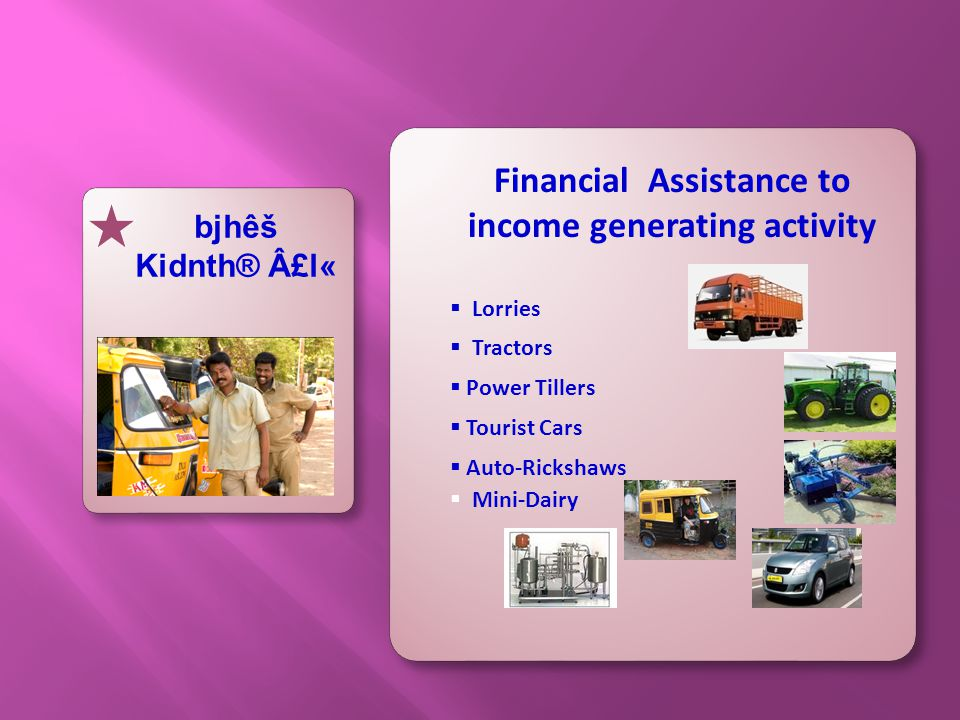 Financial Assistance to income generating activity  Mini-Dairy  Lorries  Tractors  Power Tillers  Tourist Cars  Auto-Rickshaws bjhêš Kidnth® £l«