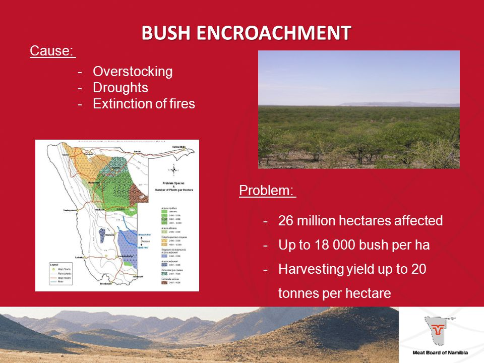 BUSH ENCROACHMENT -National Rangeland Management Strategy (2010) -Manual and chemical removal of bush -Changes in rangeland management practices (multispecies systems, rotation and rest periods) -Subsidy schemes for bush reduction .