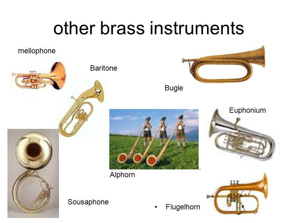 other brass instruments Flugelhorn Baritone Sousaphone Alphorn Bugle Euphonium mellophone