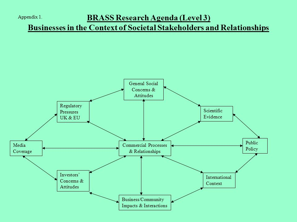 BRASS Research Agenda (Level 3) Businesses in the Context of Societal Stakeholders and Relationships Commercial Processes & Relationships Regulatory Pressures UK & EU General Social Concerns & Attitudes Scientific Evidence Public Policy Investors' Concerns & Attitudes Business/Community Impacts & Interactions International Context Media Coverage Appendix 1.