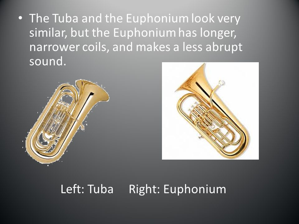 Here are some brass instruments that are not in common use.