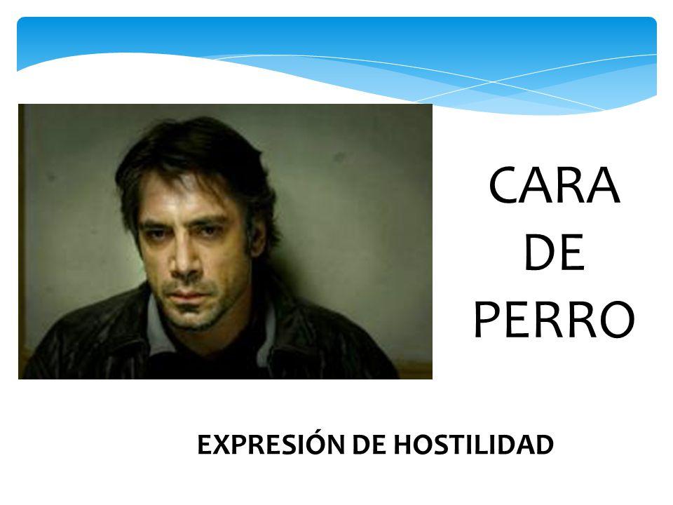 CARA DE PERRO EXPRESIÓN DE HOSTILIDAD