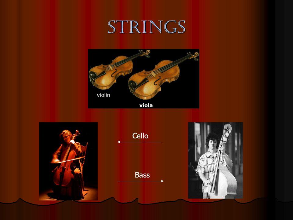 String Anatomy