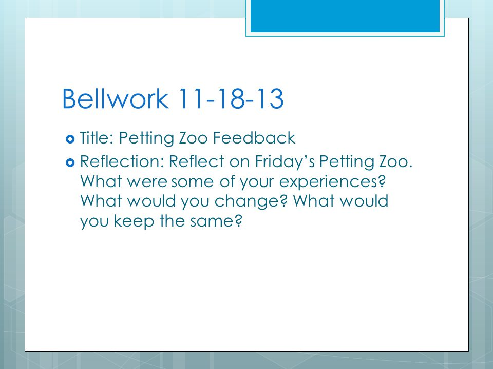 Bellwork 11-18-13  Title: Petting Zoo Feedback  Reflection: Reflect on Friday's Petting Zoo.