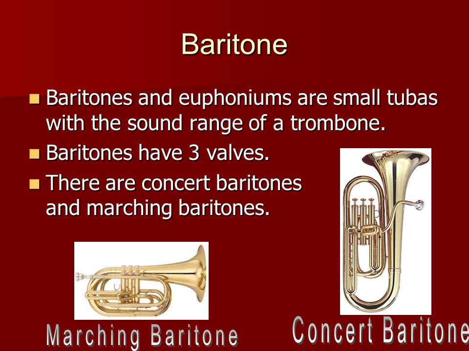 Baritone Baritones and euphoniums are small tubas with the sound range of a trombone.